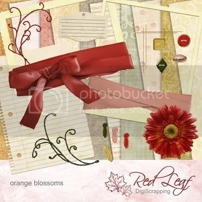 Orange Blossoms - the full kit