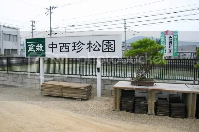Kinashi Nursery 2