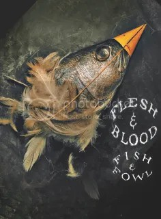 Flesh and Blood and Fish and Fowl promo image