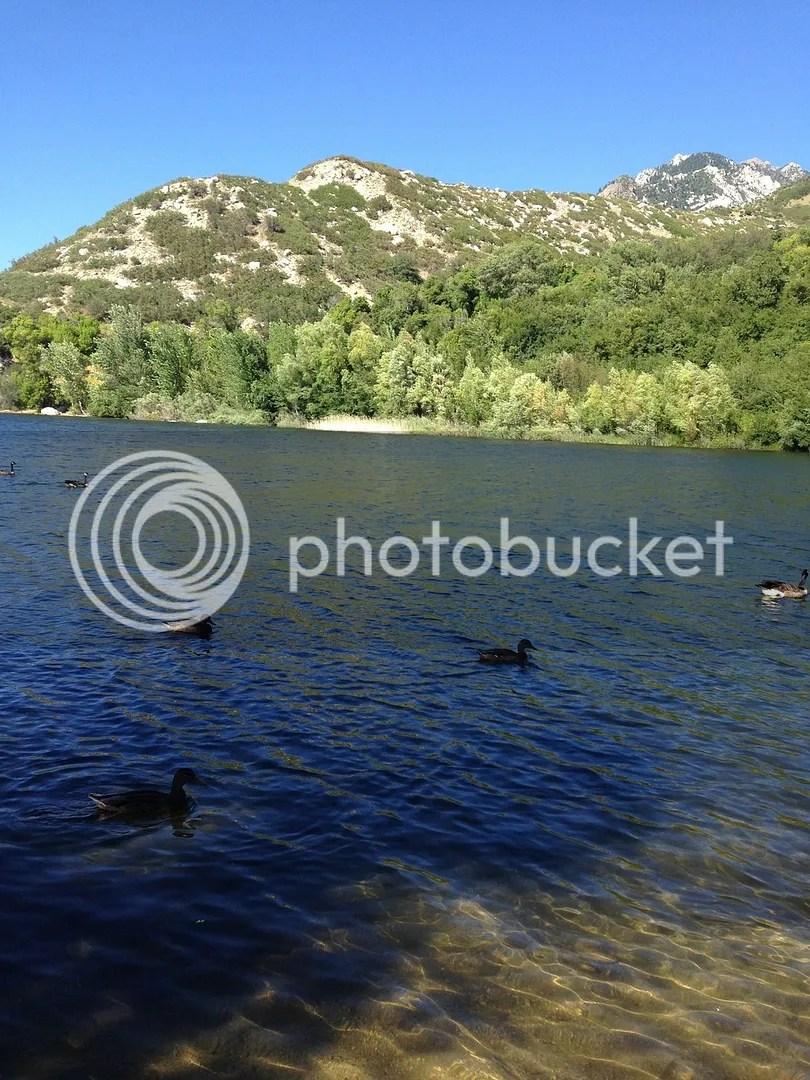 photo AB85991A-AD04-416B-8C07-2309690DC74D_zpsz5ajnxwi.jpg