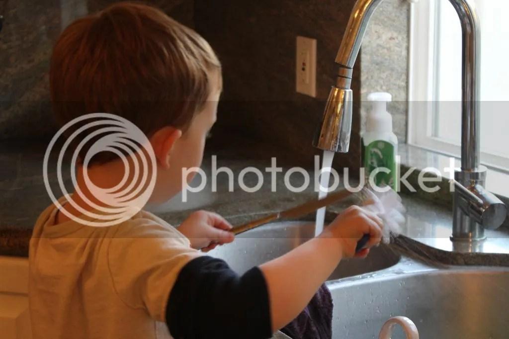 photo IMG_3683_zps35669155.jpg