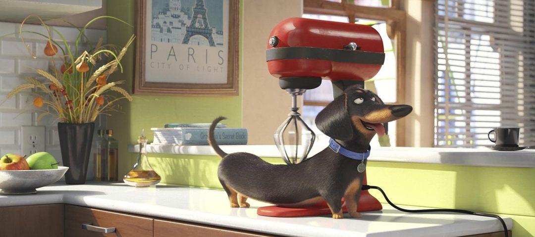 The Secret Life of Pets - 'Snowball' Trailer 5
