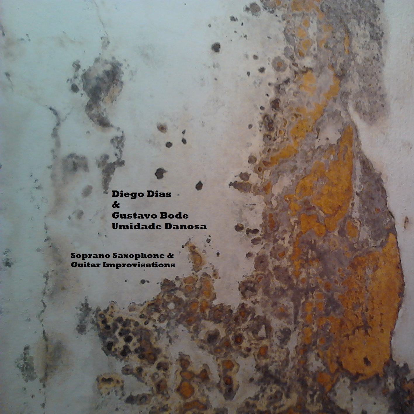 MSRCD019 - Diego Dias & Gustavo Bode - Umidade Danosa