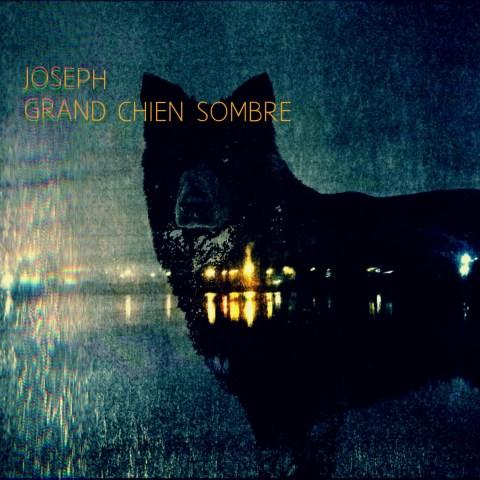 Joseph – Grand Chien Sombre