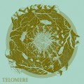 VARIOUS ARTISTS – TELOMERE