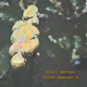 Elvii Marten – Third Spaceship