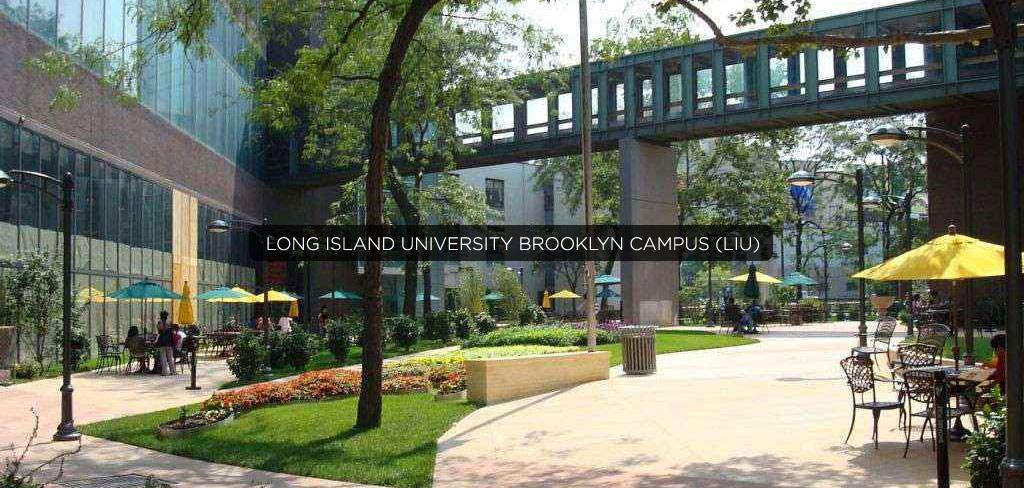 Long-Island-University-Brooklyn-Campus