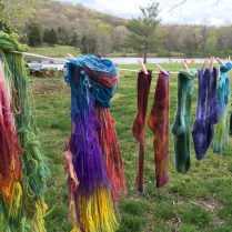 Dye Workshop results!