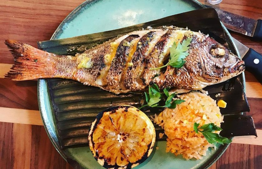 red-snapper-gallo-blanco-cafe-facebook