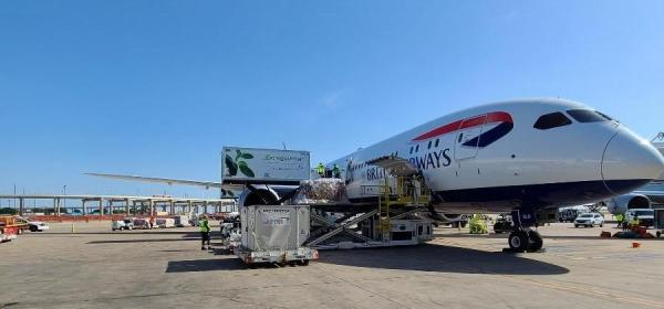 British Airways, B787-10