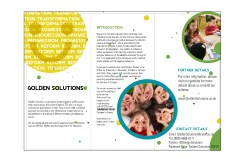 Exterior and Interior of the Golden Solutions Leaflet.