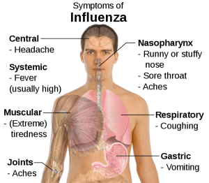 Symptoms-of-influenza