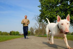 getty_rr_photo_of_man_jogging_with_dog