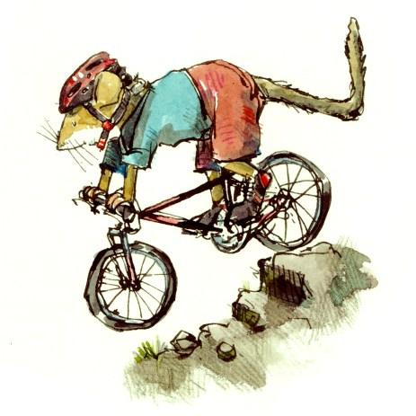 mountain-bike-steve