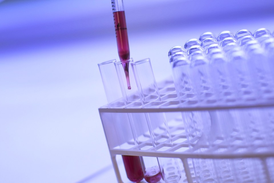 Blood Cancer: Collaboration is the Key to a Cure
