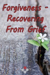 Forgiveness. Recovering From Grief