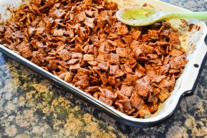 S'mores Chex Mix-8