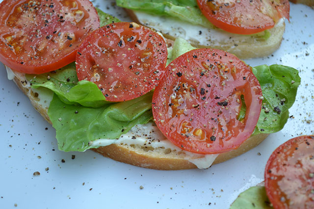 open faced tomato sandwich_C