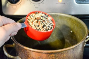 Apple and Mushroom Wild Rice Stuffing-5