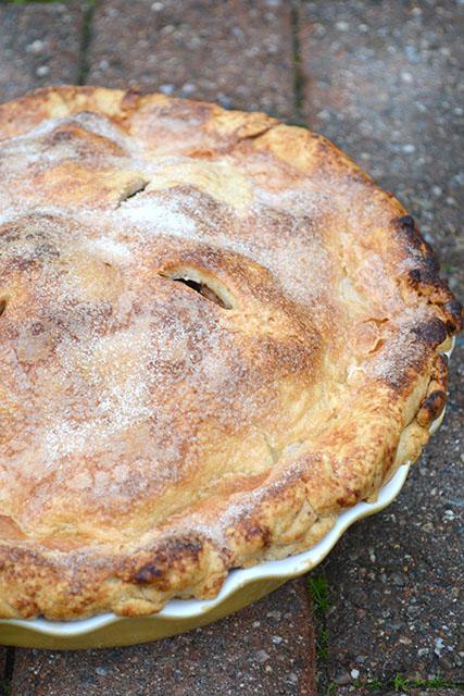 Cranberry Apple Pie_03