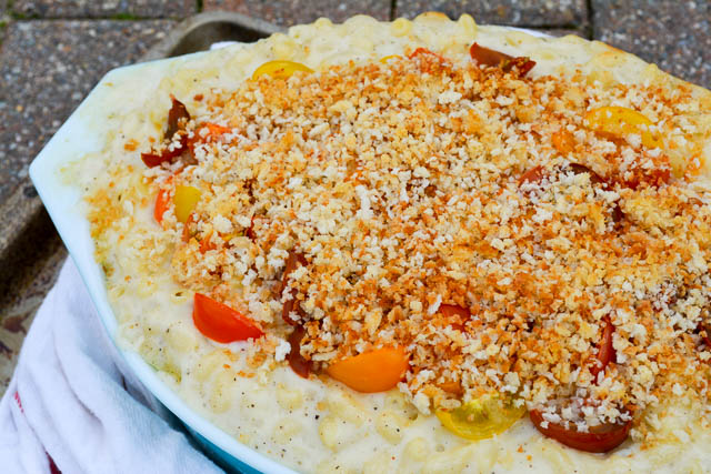 Creamy Creamy Baked Macaroni and Cheese-3