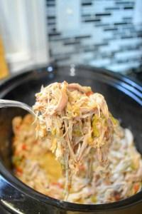 Slow Cooker Pork Carnitas-3