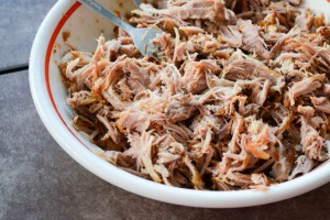 Pulled Pork Carnitas-1