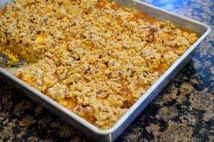 easy-pumpkin-crumble-cake_12