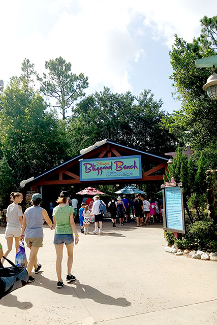 A Fun Summer Day at Disney's Blizzard Beach Water Park