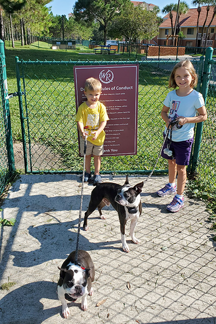 2 kids with 2 Boston Terriers at a dog park entrance