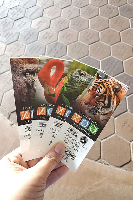 Hand holding Jacksonville Zoo Tickets
