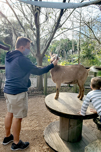 Man petting a goat at a petting zoo at Jacksonville Zoo