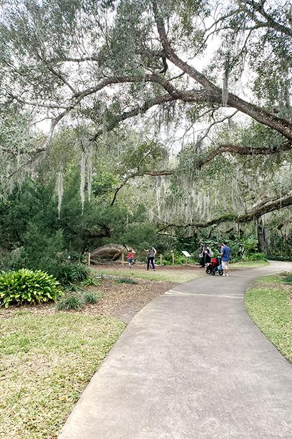 Dinosaur along path at Dinosaur Invasion at Leu Gardens