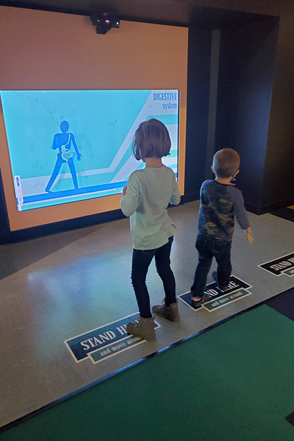 kids playing with interactive body exhibit at Jacksonville MOSH