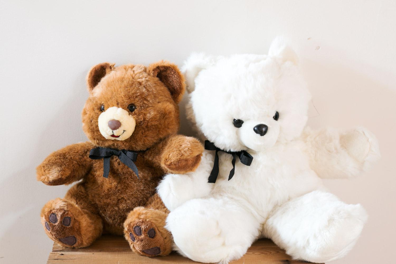 osos de peluche