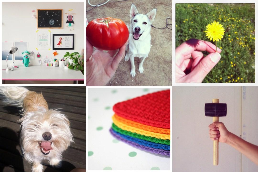 Mis fotos en Instagram 2014