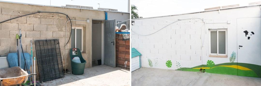 renovando la protectora de animales, acceso renovado con spray
