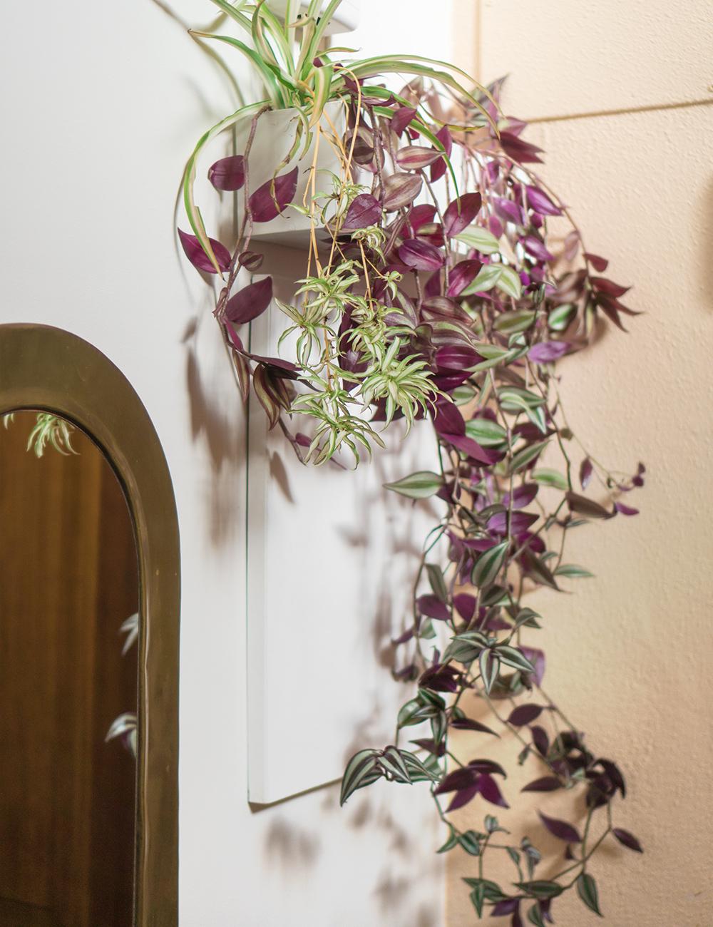 Jardinera colgante DIY, visto en