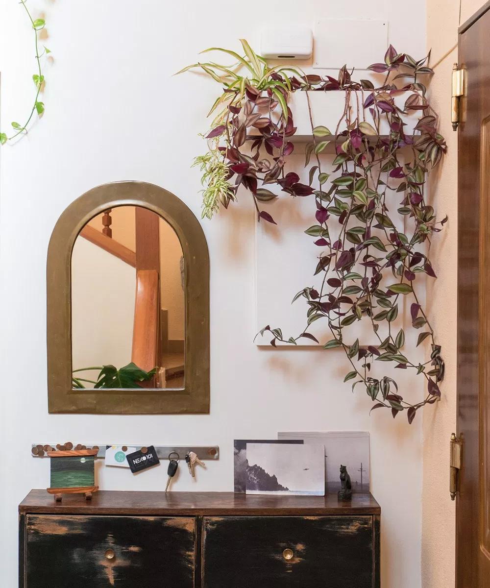 Jardinera de pared y el recibidor terminado