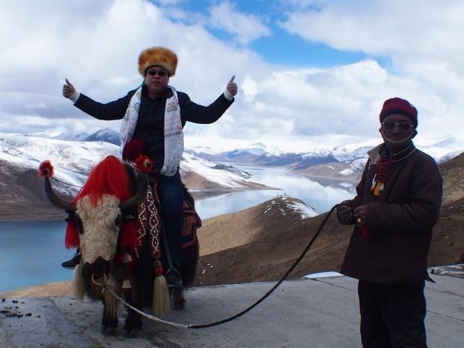 人間美景,一生必須去一次—羊卓雍措和卡若拉冰川—媲美人間仙景的地方—風塵揚西藏遊記之十