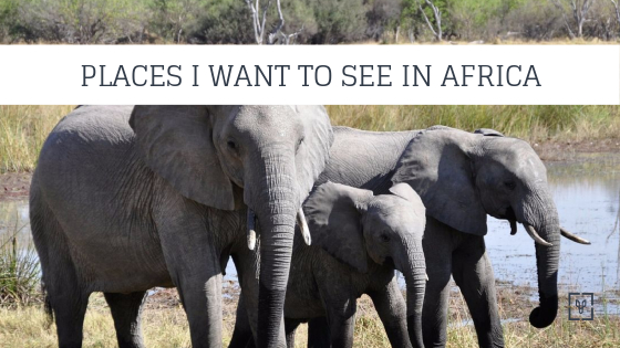 The Undisputed Greatest Wildlife Trips Of Africa