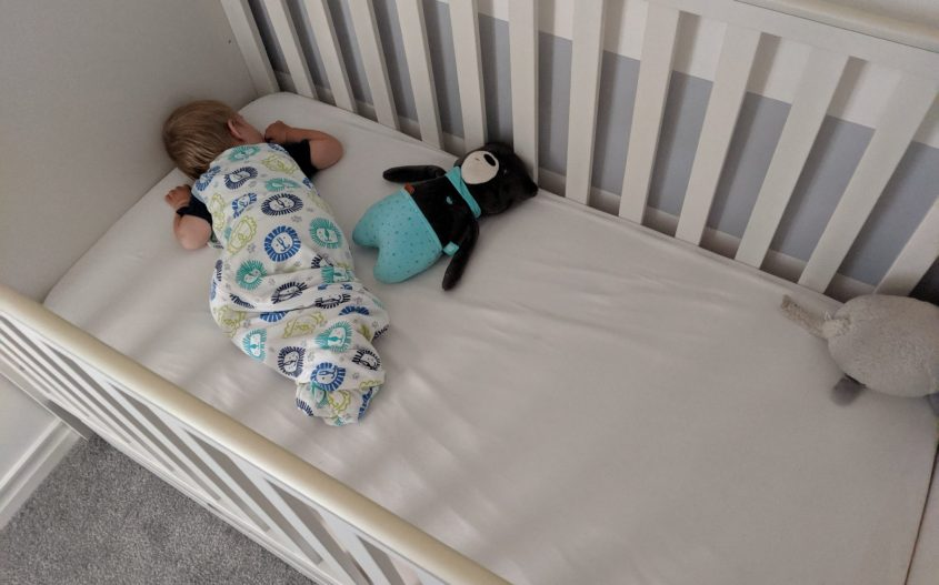 baby in cot laying on his front with my hummy toy