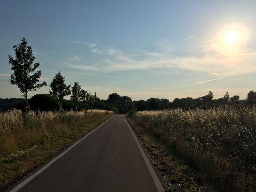 Radweg bei Pirna