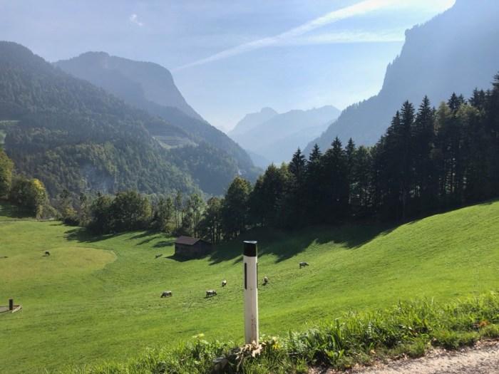 Rennrad Saisonfinale Bodensee: Tolle Landschaft