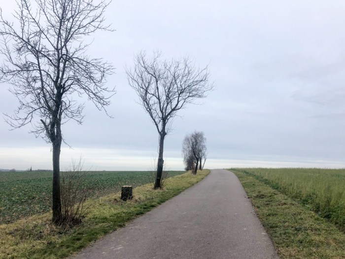 Interruption of preparation for the season - Misery in winter - iamcycling