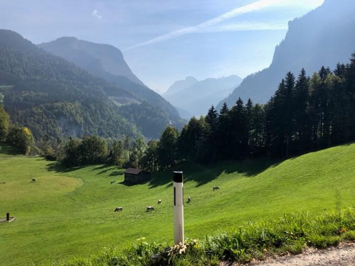 Im Bregenzer Wald 2018 - iamcycling.de