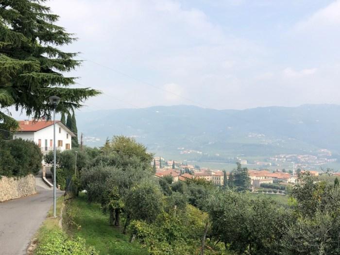 iamcycling-Mit-dem-Rennrad-am-Gardasee-Sanfte Hügel bei Negrar di Valpolicella