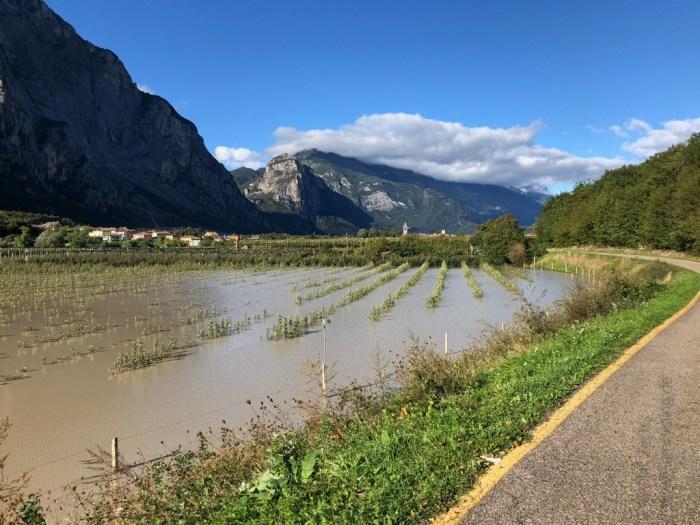 iamcycling-Mit-dem-Rennrad-am-Gardasee-Überflutete Felder im Sarca Tal