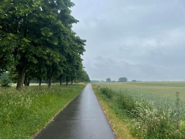 bei Schwerin - Ostsee-Tour - iamcycling.de
