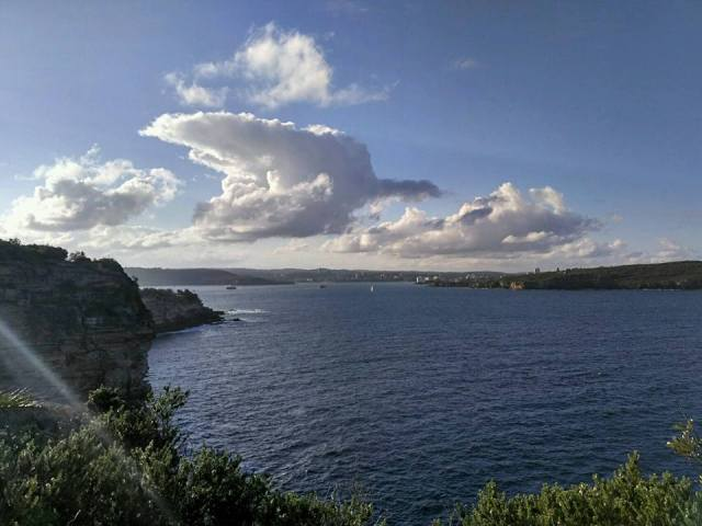watsons-bay-edge-cliff-view